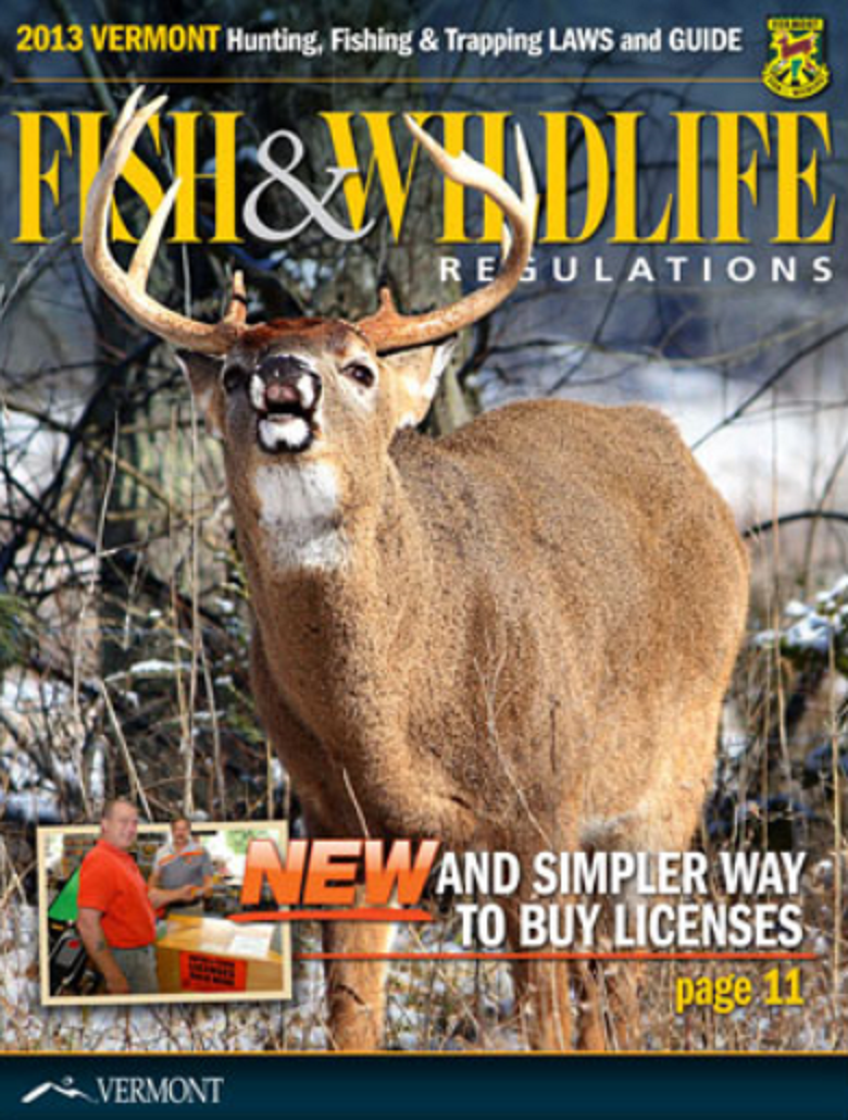 Regulations for Vermont fishing license